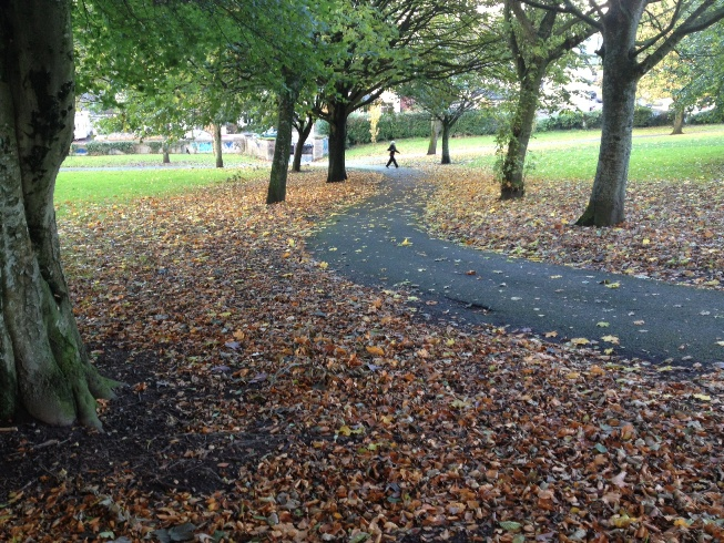 Last of the Autumn leaves, Ballinlough Park, 4 November 2012