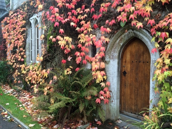 Autumnal colours, President's Office Door, University College Cork, 10 October 2014