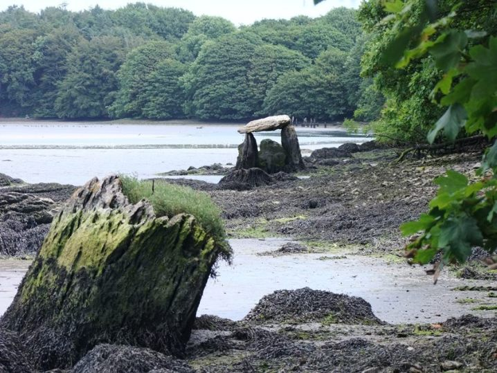 Rostellan Dolmen from Cork Harbour Through Time, 2014