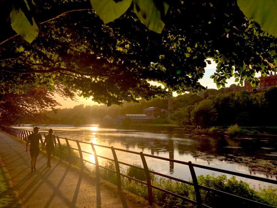 Lee Fields, Cork, present day (picture: Kieran McCarthy)