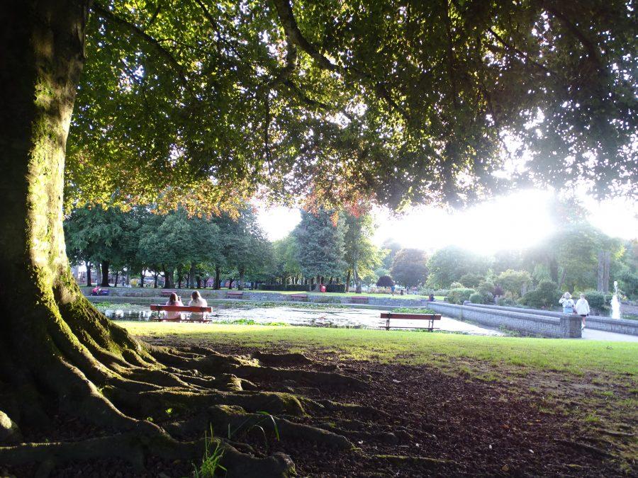 Fitzgerald's Park, Cork, July 2020 (picture: Kieran McCarthy)