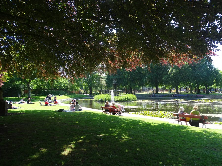 Fitzgerald's Park, Cork, June 2020 (picture: Kieran McCarthy)