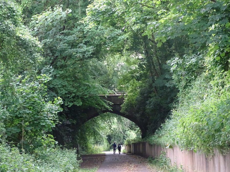 Old Cork Blackrock and Passage Railway Line, August 2020 (picture: Cllr Kieran McCarthy)