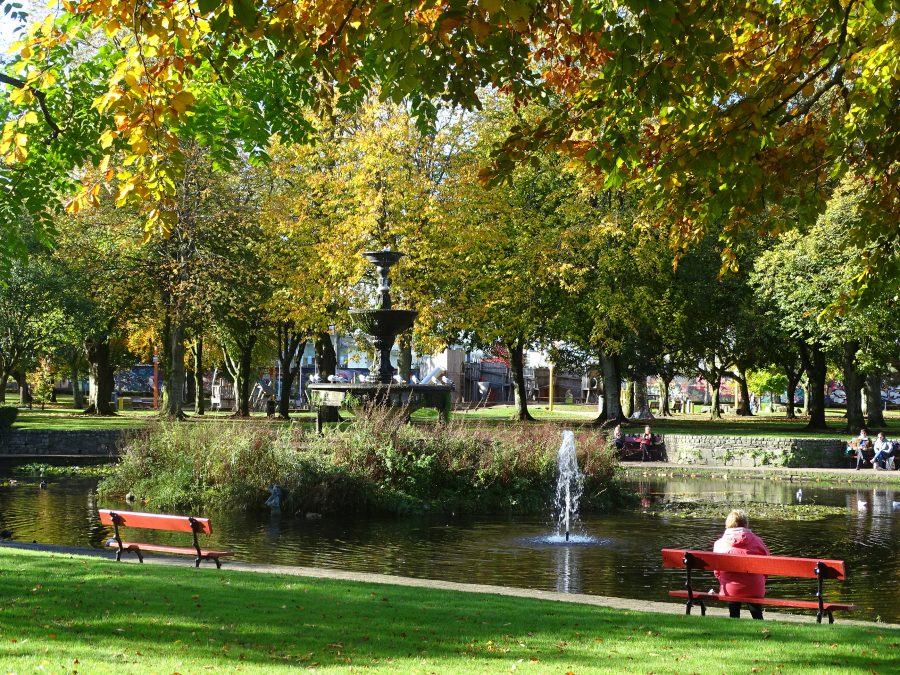 Fitzgerald's Park, Cork, Late October 2020 (picture: Cllr Kieran McCarthy