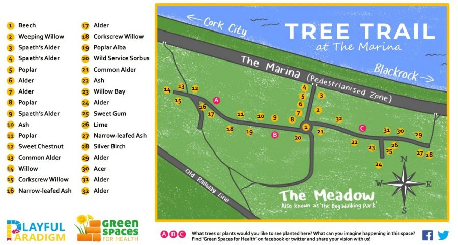 Tree Trail at The Meadows, The Marina, Cork, present day