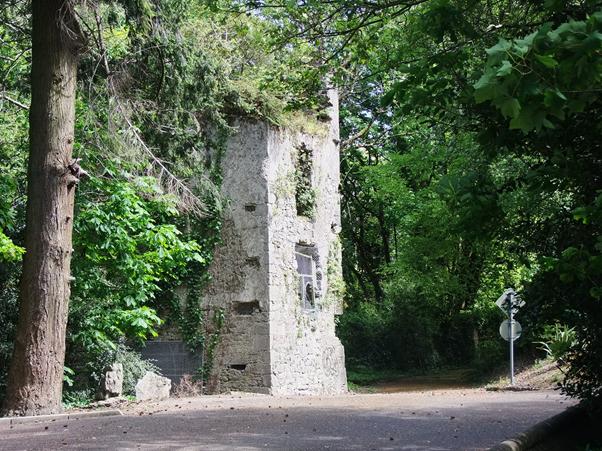 Dundanion Castle, Blackrock present day (Kieran McCarthy)