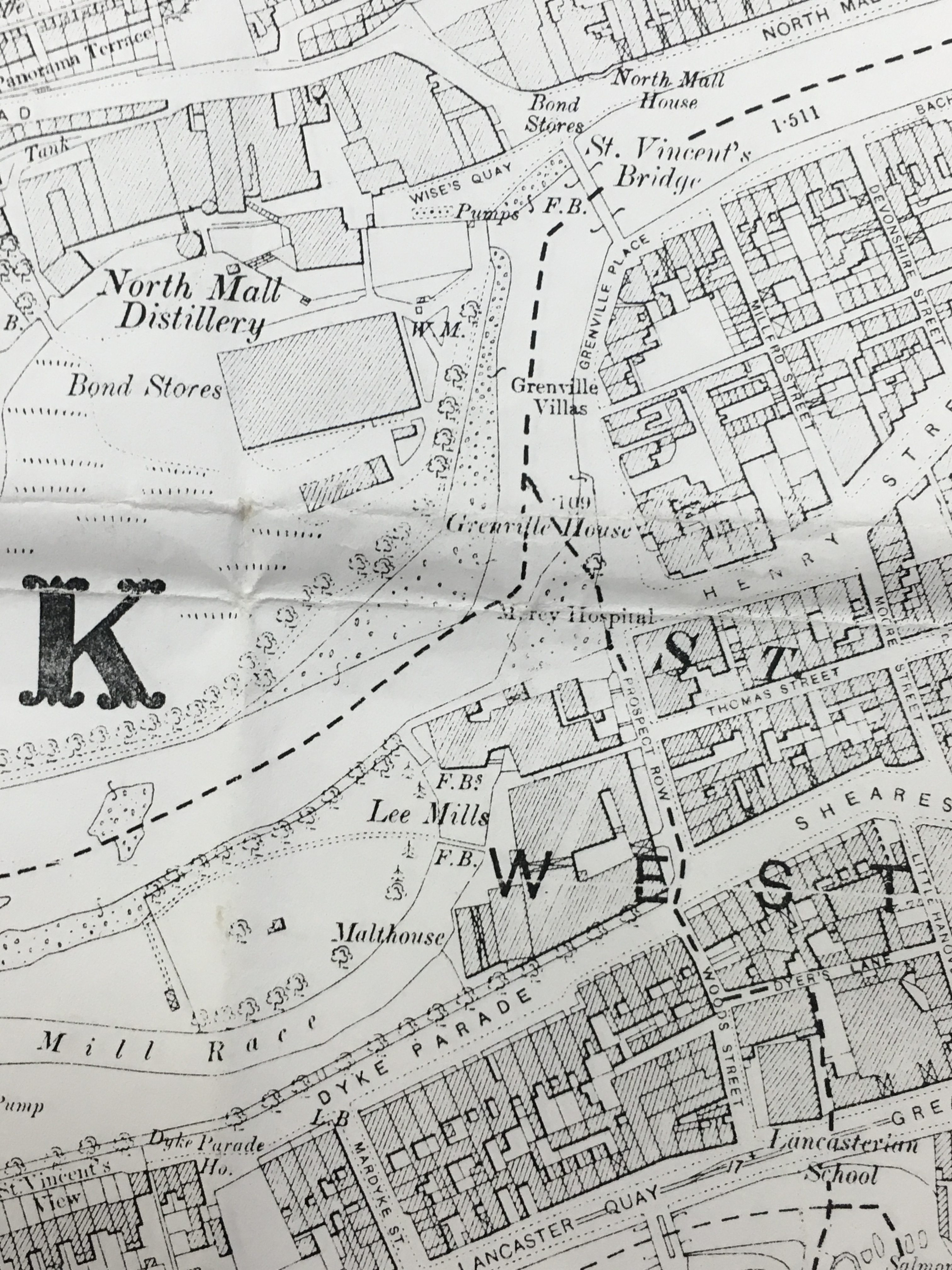 Map of Lee Mills & environs, Cork 1900 (source: Cork City Library)