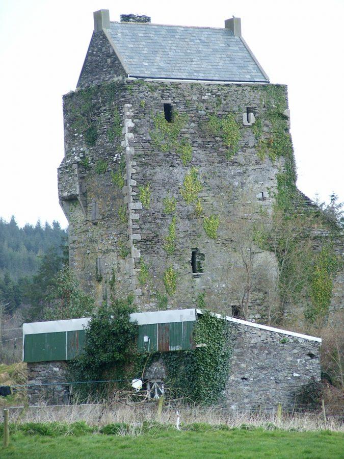 Carrignacurra Castle, Lee Valley, Co. Cork, present day (picture: Kieran McCarthy)