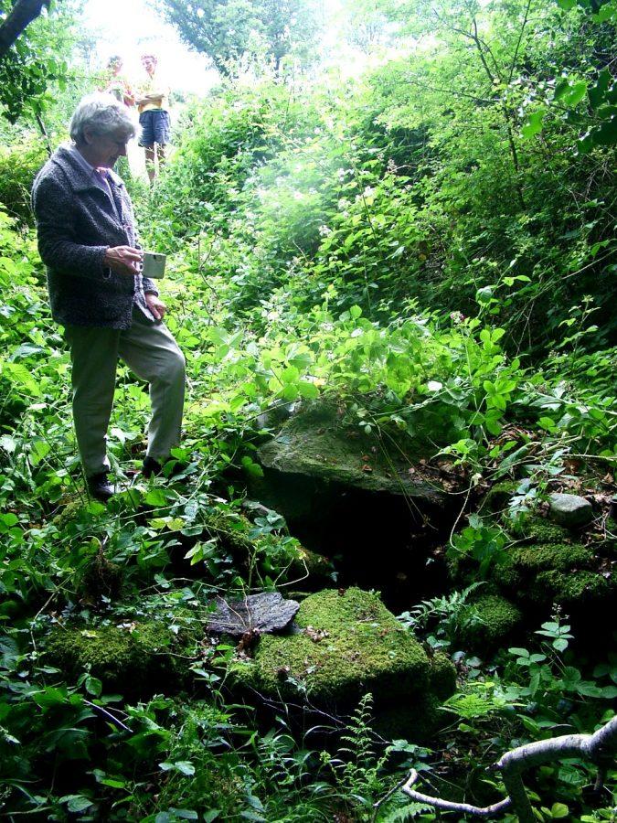 Killbarry Holy Well, 2006 (picture: Kieran McCarthy)