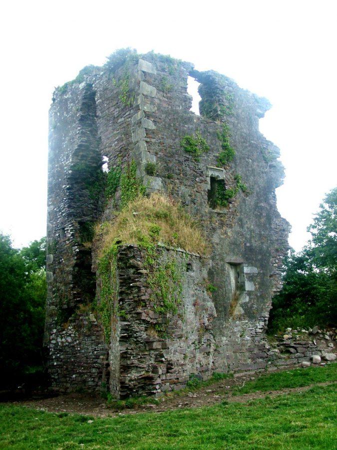 Mashanaglass Castle, Co. Cork (picture: Kieran McCarthy)