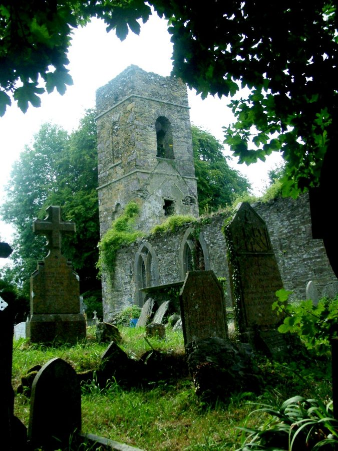 Ruined Aghinagh Church, Co. Cork, present day (picture: Kieran McCarthy)