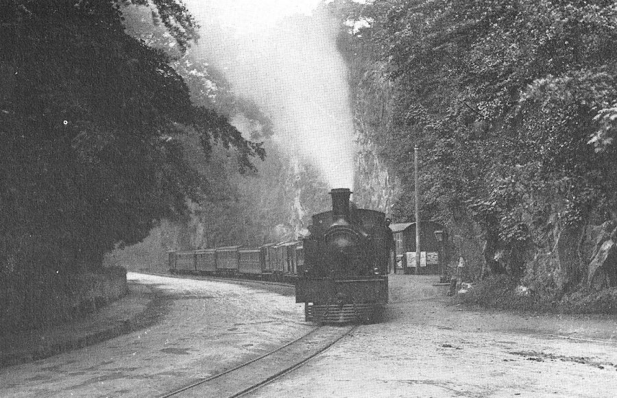 Cork-Muskerry Railway at Carrigrohane, c.1900 (source: Cork City Library)