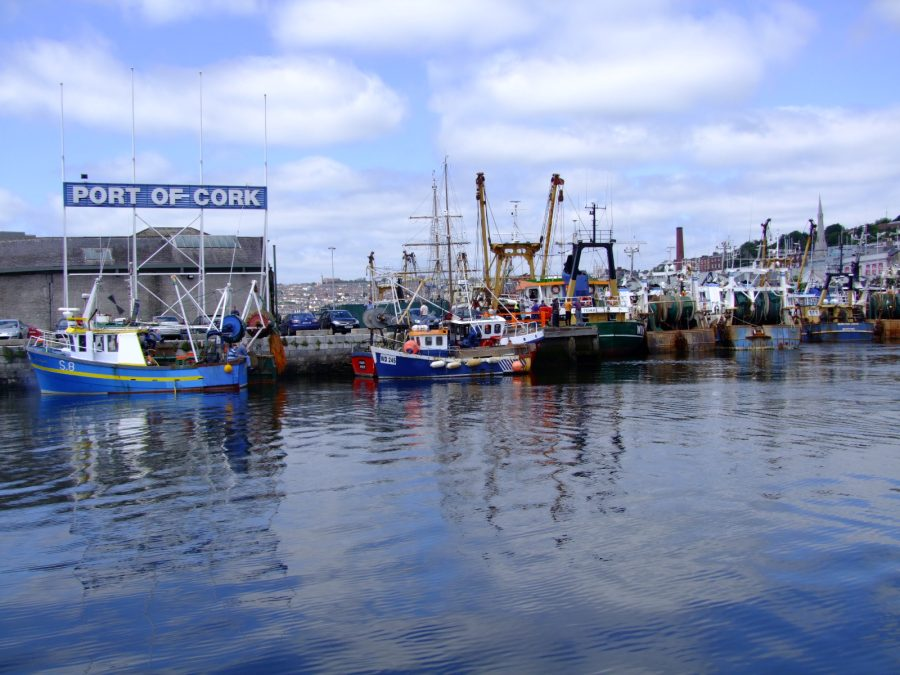 Cork Docks, present day (picture: Kieran McCarthy)