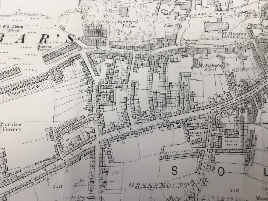 Section of slum area to the south west of St Finbarre's Cathedral, c.1900 (source: Cork City Library)