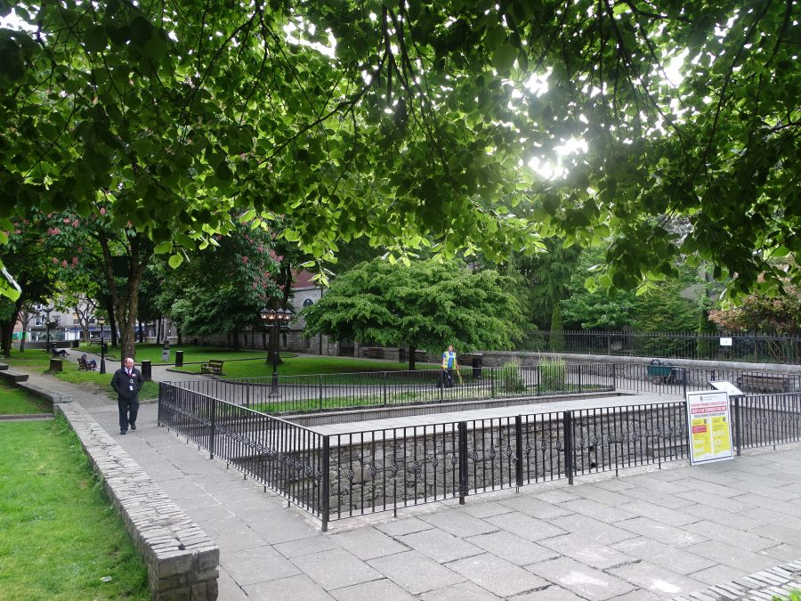 Town Wall on display at Bishop Lucey Park, present day (picture: Kieran McCarthy)
