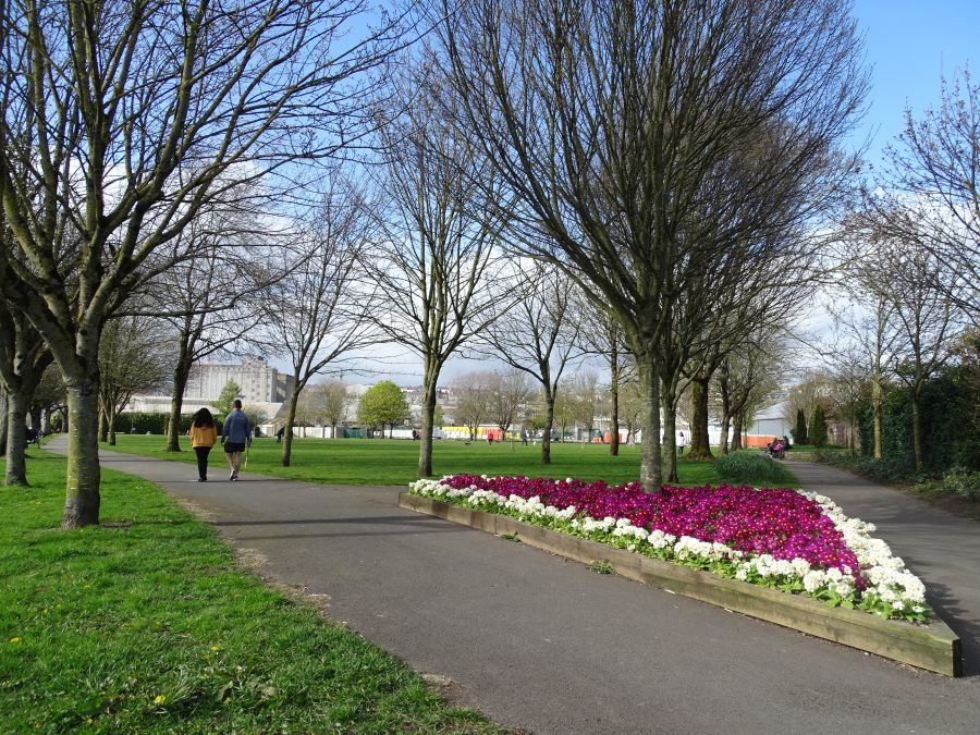 Kennedy Park, Cork, present day (picture: Kieran McCarthy)