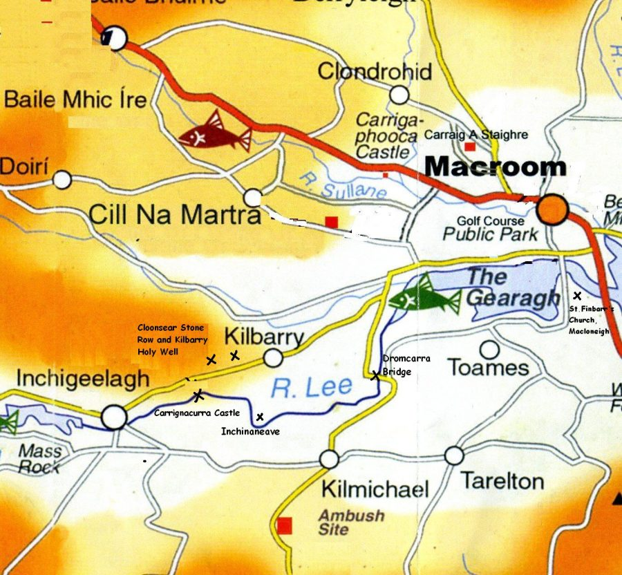 River Lee on its journey from Inchigeela to Macroom (picture: Kieran McCarthy)