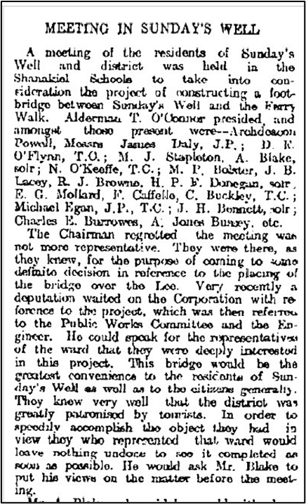 Meeting in Sunday's Well, Extract from Cork Examiner, 6 November 1908 (source: Cork City Library)