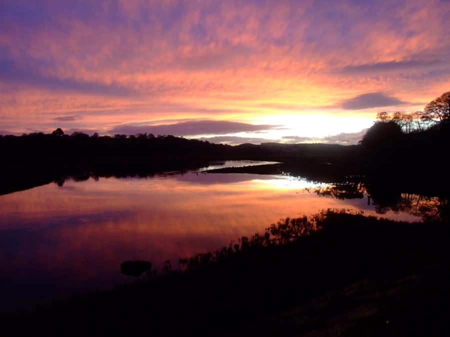 Inniscarra Reservoir, River Lee Valley, County Cork, November 2006 (picture: Kieran McCarthy)