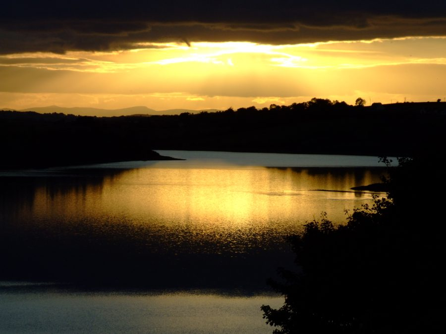 Inniscarra Reservoir, River Lee Valley, Co. Cork September 2007 (picture: Kieran McCarthy)