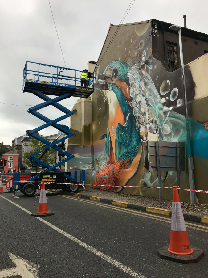Kingfisher Mural being painted, Lavitt's Quay, Cork, May 2019 (picture; Cork City Council)