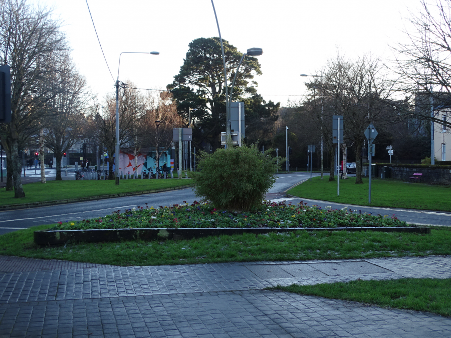 Former site of Mardyke Bandstand or house, present day flower bed (picture: Kieran McCarthy)