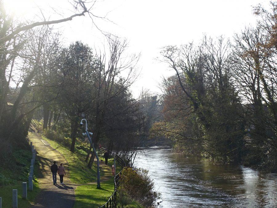 River Lee at UCC, Cork, Spring 2021 (picture: Kieran McCarthy)