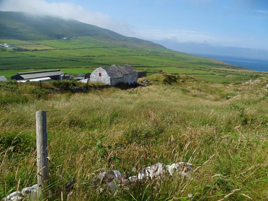 Mizen Peninsula, Co. Cork, present day (picture: Kieran McCarthy)