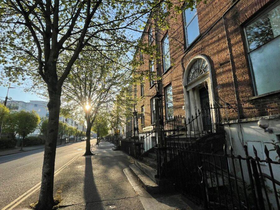 South Terrace, Cork, spring 2021 (picture: Kieran McCarthy)